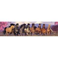 Лошади. Панорама.
