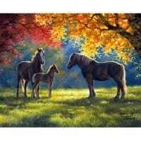 Лошади в лучах солнца