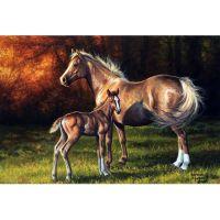 Лошадь с жеребенком 2