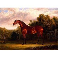 Благородный конь.Джон Фредерик Херринг