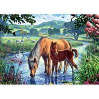 Лошади на пруду
