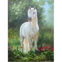 Белая лошадь и маки