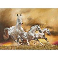 Бег тройки лошадей