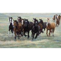 Табун лошадей в поле