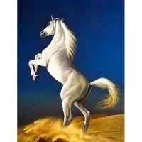Белогривый красавец