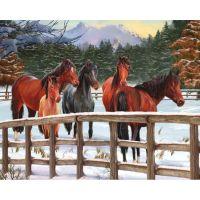 Лошадки в загоне