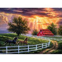 Лошади на ранчо
