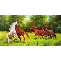 Игра лошадей