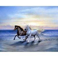 Море и кони