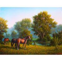 Лошади летом