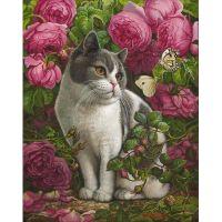 Котик и розы
