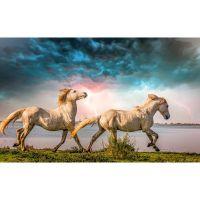 Кони перед грозой