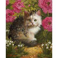 Кудрявый котеночек