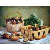 Корзинка и лукошко с грибами