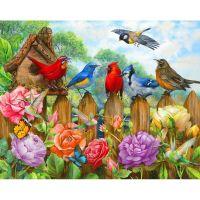 Птичье собрание
