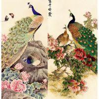 Шикарные птицы