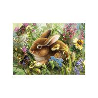 Зайчонок и бабочки