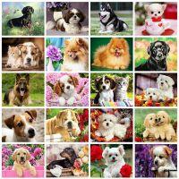 Собачки в ассортименте