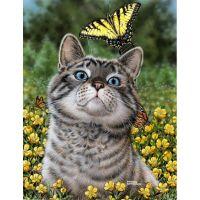 Котейка с бабочкой