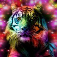 Цветной тигр