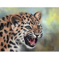Ярость леопардика