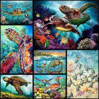 Морские черепашки в ассортименте