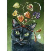 Иллюстрации с кошками