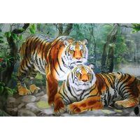 Два взрослых тигра