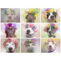 Собачки в цветочных композициях. В ассортименте