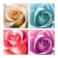 Цветные розы в ассортименте