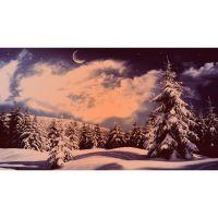 Зимний вечер в лесу