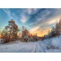Тропинка в зимний лес