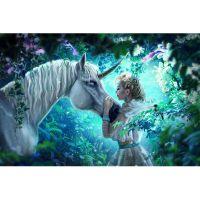Единорог и принцесса