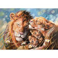 Семья и любовь