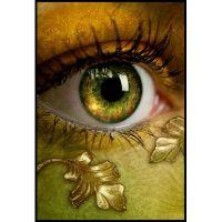 Золотое око