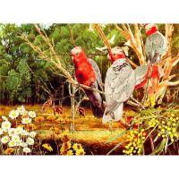 Птица семейства какаду
