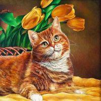 Рыжий кот и желтые тюльпаны