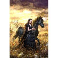 Девушка и конь единорог