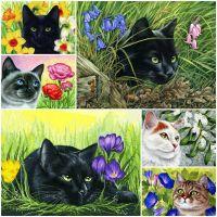 Коты и цветы. Ирина Гармашова.
